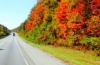 Automn Highway